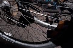 在奔跑的钝齿轮 免版税库存图片
