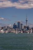 在奥克兰地平线前面的许多白色风船 免版税库存图片