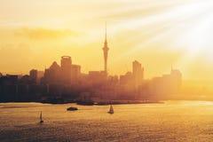 在奥克兰市,新西兰的金黄日落 库存照片