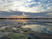 在奥卡万戈三角洲的日落图片 免版税库存照片