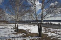 在奥卡河的春天 库存照片