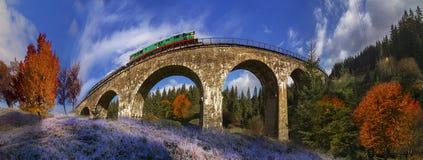 在奥地利人的柴油火车桥梁 免版税图库摄影