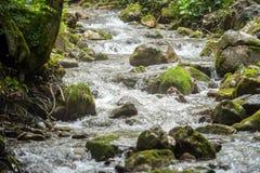 在奥地利使场面,水峡谷环境美化 库存图片