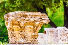 在奥林匹亚,希腊的废墟 图库摄影