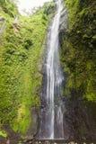 在奥梅特佩岛,尼加拉瓜的圣拉蒙瀑布 库存照片