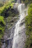 在奥梅特佩岛,尼加拉瓜的圣拉蒙瀑布 免版税库存照片