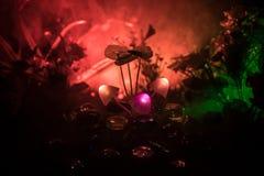 在奥秘黑暗的森林特写镜头的三个幻想发光的蘑菇 不可思议的蘑菇美丽的宏观射击或三灵魂在ava丢失了 库存图片