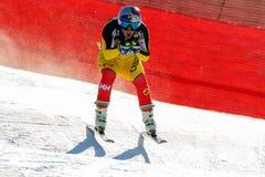 在奥迪FIS高山滑雪世界杯-人的下坡种族的GUAY艾瑞克 免版税库存照片