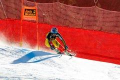 在奥迪FIS高山滑雪世界杯-人的下坡种族的GUAY艾瑞克 免版税图库摄影
