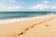 在奥阿胡岛夏威夷的著名万岁管道海滩 库存照片