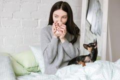 在女孩和狗之间的友谊 库存图片