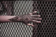 在女孩的无刺指甲花纹身花刺 图库摄影