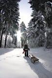 在女孩风景雪橇冬天之后 库存照片