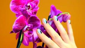 在女性手上的修指甲有兰花的 股票视频