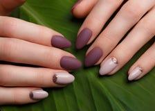 在女性手上的嫩整洁的修指甲在绿色离开背景 钉子设计 免版税图库摄影