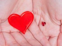 在女性极少数的两红色心脏 库存照片