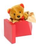 在女用连杉衬裤里面的熊配件箱 免版税库存图片