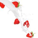 在奶油色飞溅的草莓 库存图片