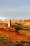 在奶牛场的温暖的日出 免版税库存照片