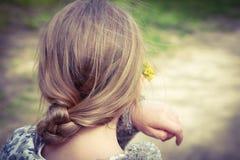 在她的头发的花 库存照片