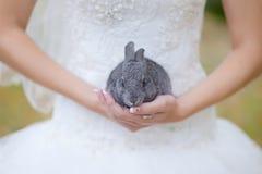 在她的胳膊的一只兔子 免版税库存图片