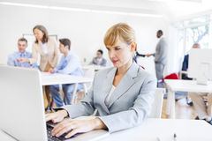 在她的膝上型计算机前面的一名工作的女实业家 图库摄影