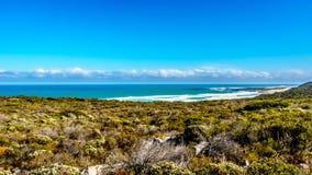 在好望角和Platboom海滩之间的大西洋在好望角自然保护 库存图片