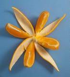 在好的花形状的桔子 免版税图库摄影
