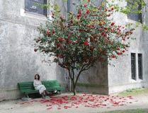 在妇女之下的开花的结构树 免版税图库摄影