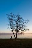 在妇女之下的结构树 免版税库存照片