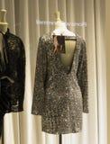 在妇女时装模特的光滑的礼服 库存图片