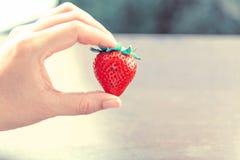 在妇女现有量的草莓 图库摄影