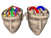 在妇女脑子和人- cartoo之间的区别 库存图片