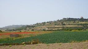 在姆迪纳附近,马耳他 库存图片