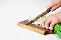 在委员会的新鲜的绿色大蒜有刀子的 库存照片
