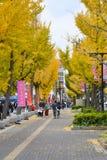 在姬路城堡,日本附近的街道 免版税库存图片