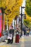 在姬路城堡,日本附近的街道 库存图片