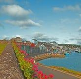 在威克洛爱尔兰Commerical港口和船坞开花墙壁 免版税库存图片