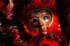 羽毛红色&黑面具2 库存图片