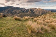 在威瑟小山的日落在Marlborough,新西兰中 库存照片