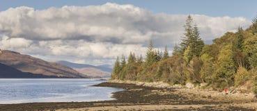 在威廉堡附近的海湾Linnhe在苏格兰 免版税库存照片