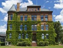 在威廉斯学院的常春藤覆盖的大厦 免版税图库摄影