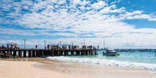 在婆罗双树佛得角- Cabo Verde的圣玛丽亚海滩 免版税库存照片