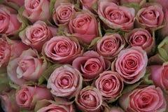 在婚礼安排的桃红色玫瑰 库存图片