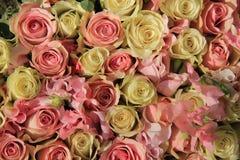 在婚礼安排的白色和桃红色玫瑰 库存图片