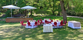在婚礼的太阳绿色森林沼地桌上 库存图片