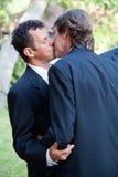 在婚礼的快乐夫妇亲吻 免版税库存照片