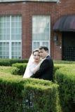 在婚礼礼服的亚洲中国夫妇在灌木站立 库存图片
