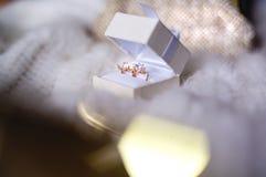 在婚礼箱子的美丽的首饰 免版税库存照片