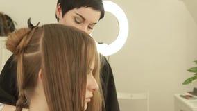 在子线头发的美发师喷洒的水在切开在美容院前 关闭做女性理发的美发师  影视素材